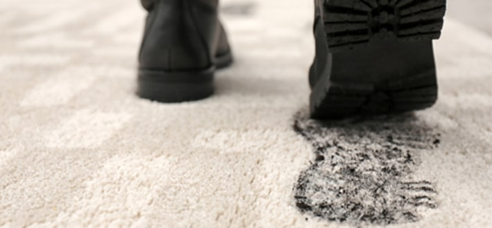 The Best Carpet For High Traffic Use Areas Nycleaners Blog